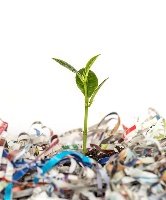 Shredded documents recycled