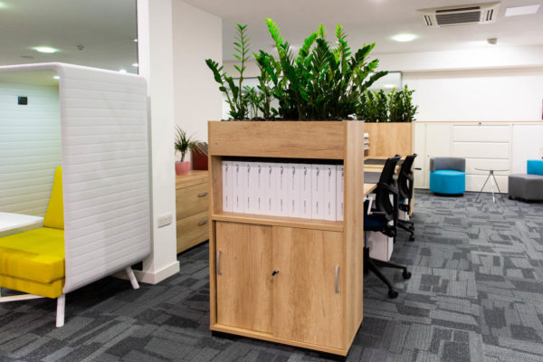office storage with green plants